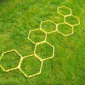 Hexagon Agility Ladder Pack